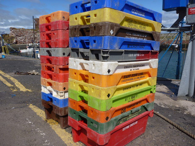 United Colours of Fishboxes at Victoria Harbour, Dunbar