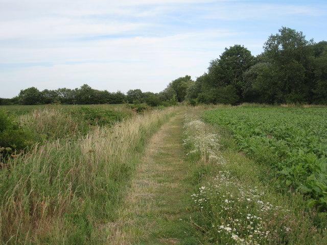 Footpath near Redbourne