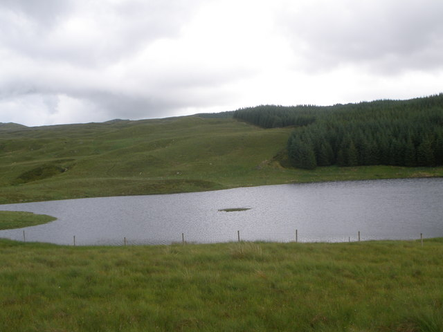 Looking over the loch to edge of the forest