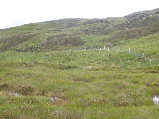Deer fence protecting a recent native woodland plantation