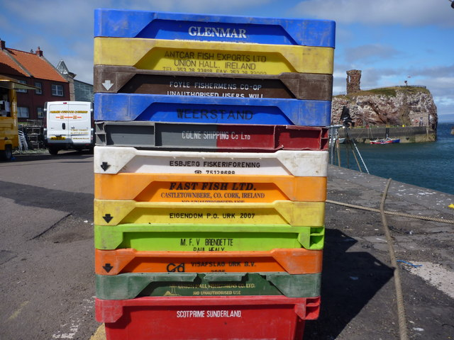 European fish-box convention at Victoria Harbour, Dunbar