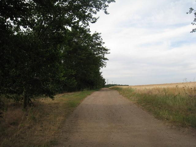 Farm track near Redbourne