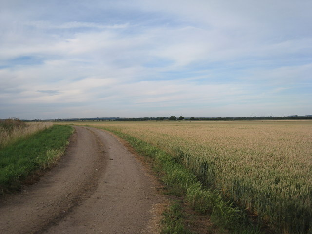Field and farm track by the Catchwater Drain