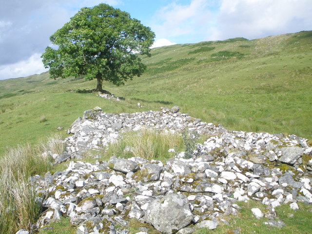 Remains of an old shieling and an ash tree above Loch Awe