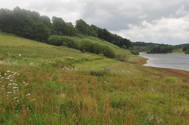 Exmoor : Wimbleball Lake & Grassy Bank