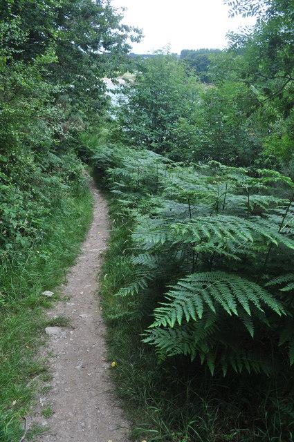 Exmoor : Wimbleball : Lakeside Path