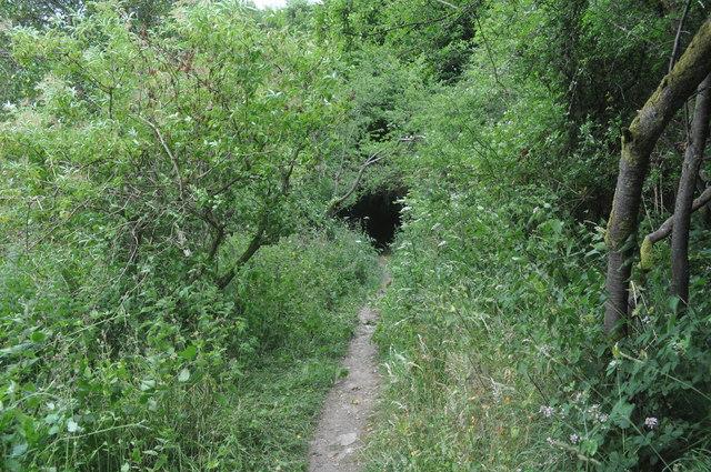 Exmoor : Wimbleball Lakeside Path