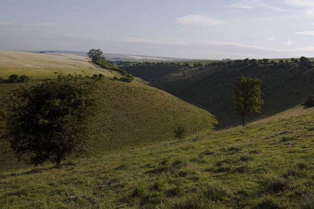 Deep Dale, near Wharram Percy