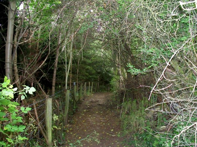 Footpath to Over Norton [3]