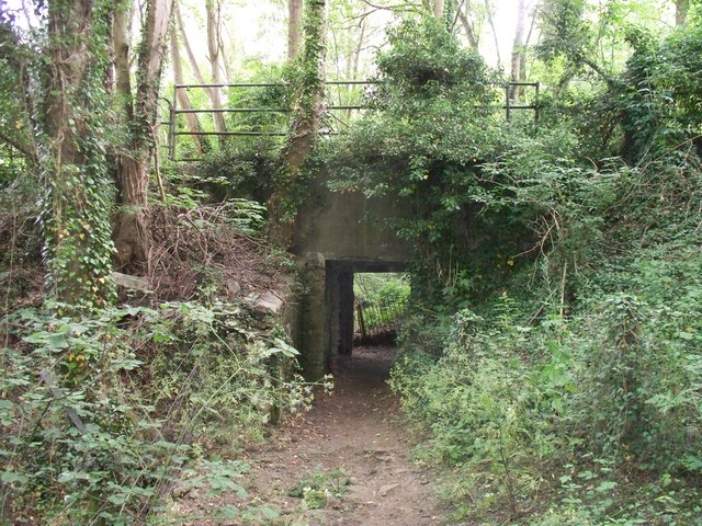 Footpath to Over Norton [5]