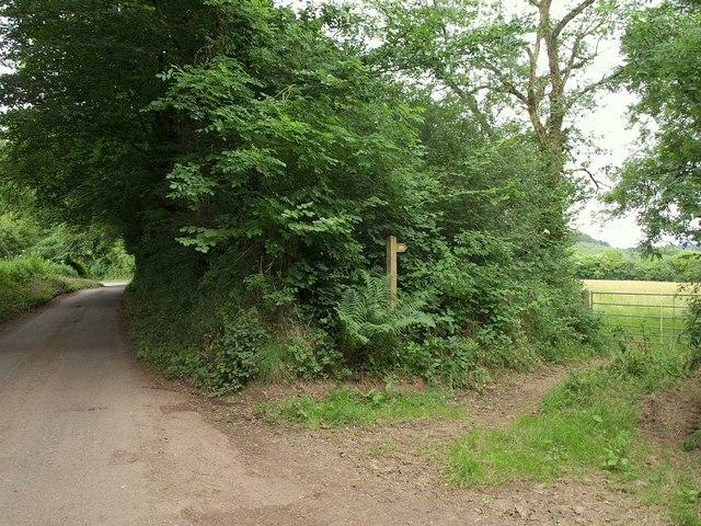 Lane south of Winters Cross