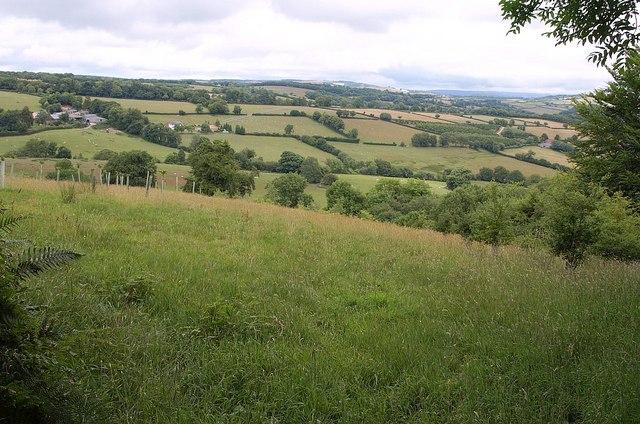 Field on Potter's Knap