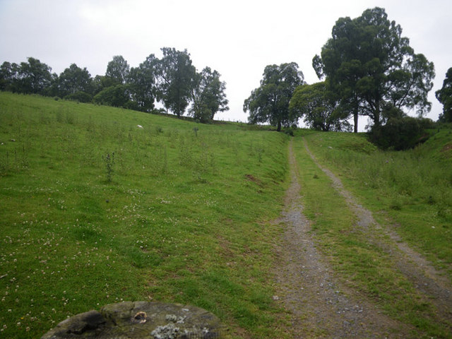 Track leading over the hill