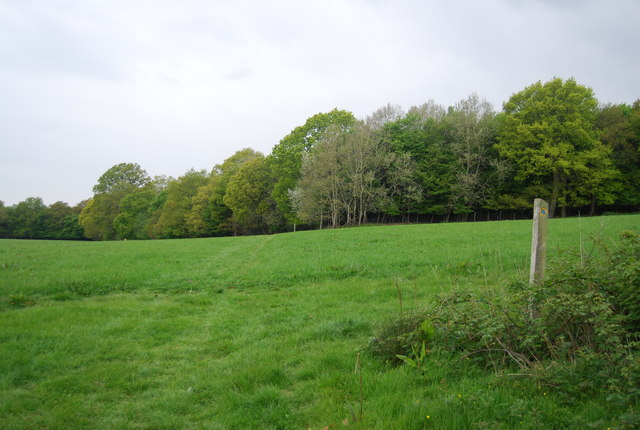 Sussex Ouse Valley Way along the edge of Wapsbourne Wood