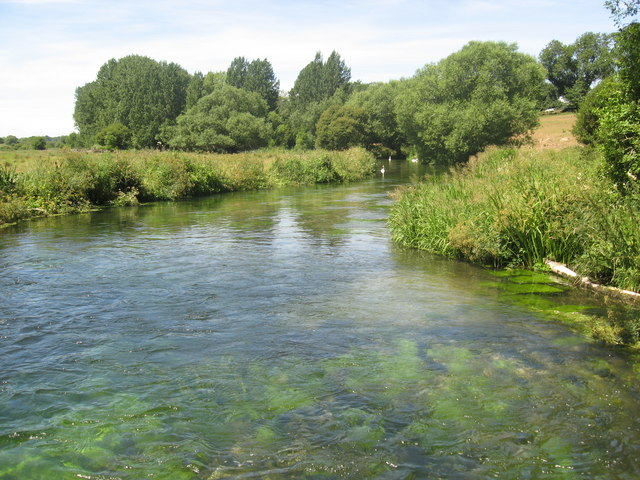 The River Itchen looking downstream