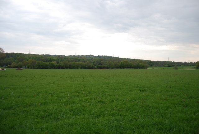 View south from Wapsbourne Wood
