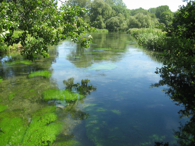 The River Itchen looking upstream