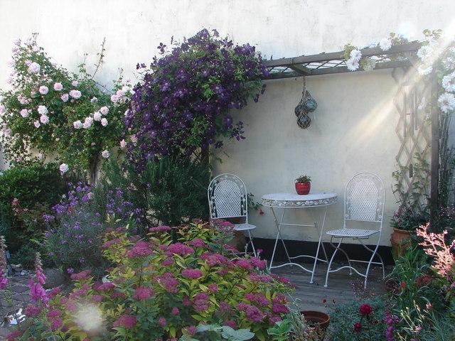 Goldsithney garden in June