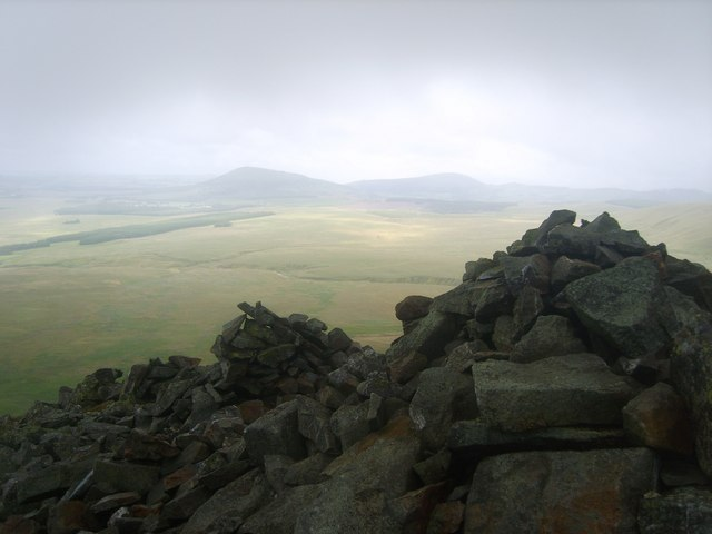On White Pike