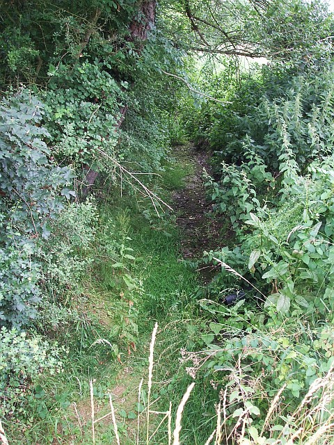 Thistle Brook - dry watercourse