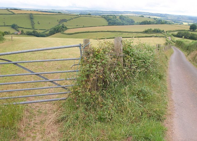 Gate with a view, Hill Lane