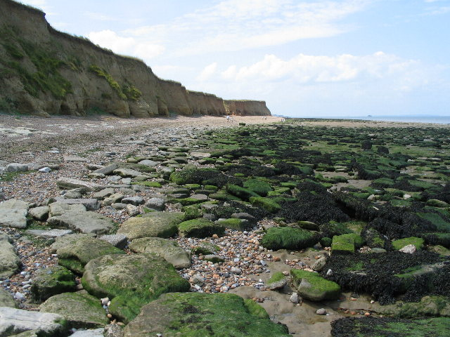 Cliffs and foreshore near Reculver