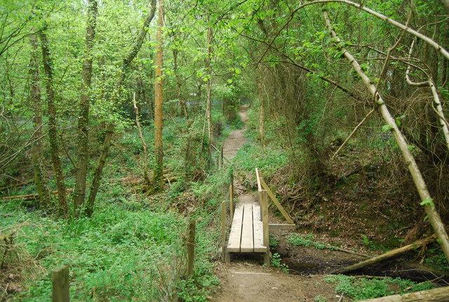 Footbridge in Round Wood