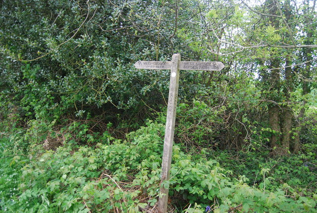 Sussex Border Path signpost, edge of Round Wood