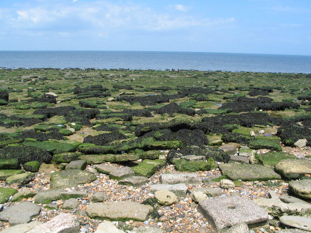 Rocky foreshore at Reculver