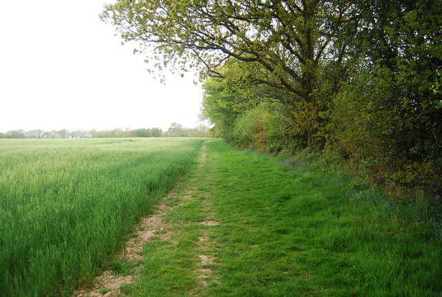 The Sussex Border Path