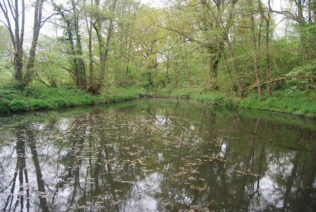 Fishing Lake, Long Plantation