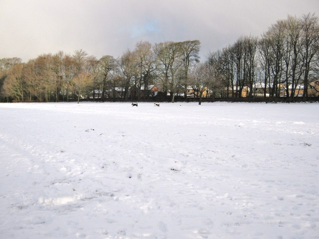 Worden Park in the snow