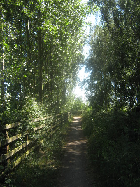 Cyclepath towards Nagden Cottages