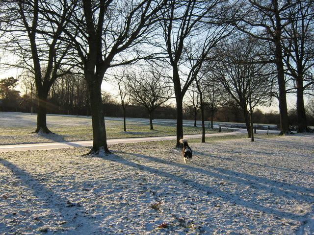 Worden Park, Leyland
