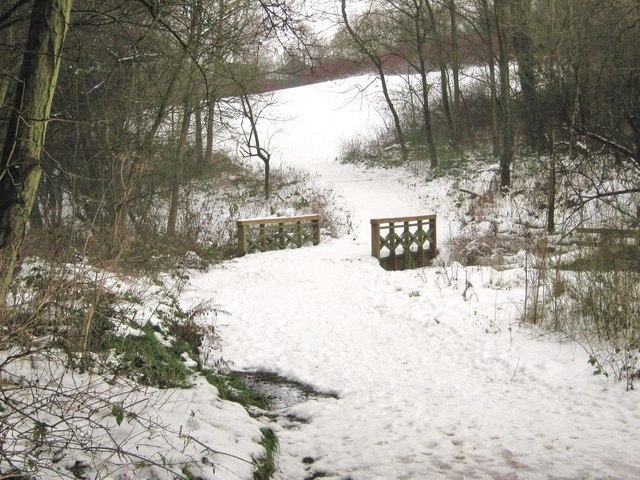 A bridge over a small stream