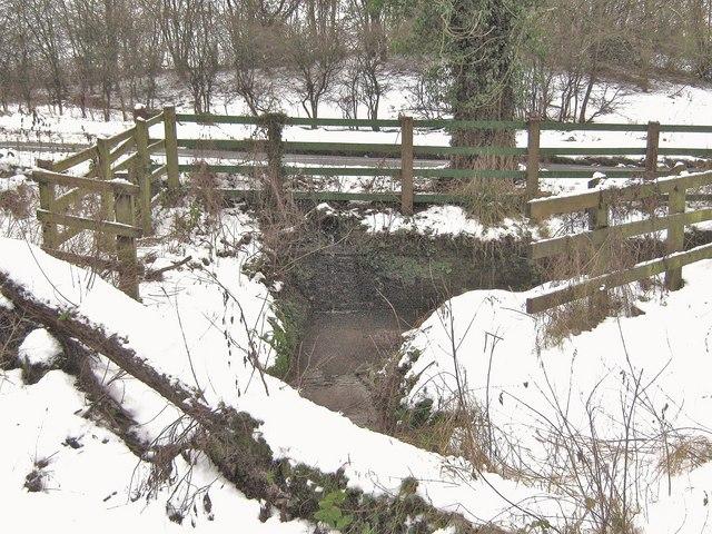 A small stream beside Back Lane