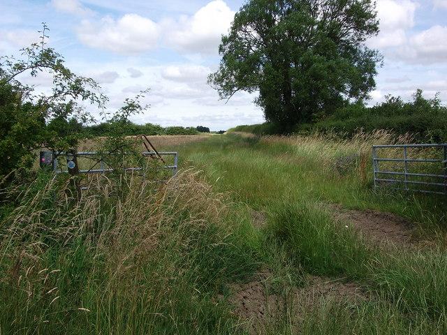 Fields and bridleway north-west of Church Farm
