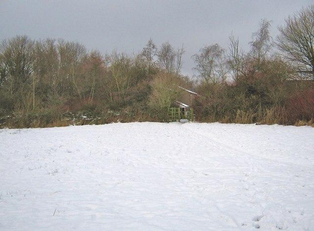 A snowy field looking towards Pingle Croft