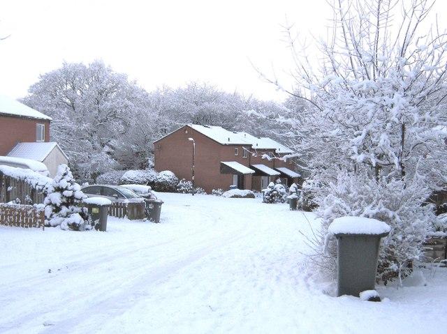 Pingle Croft in the snow