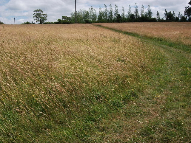 Field east of Old Potash Farm
