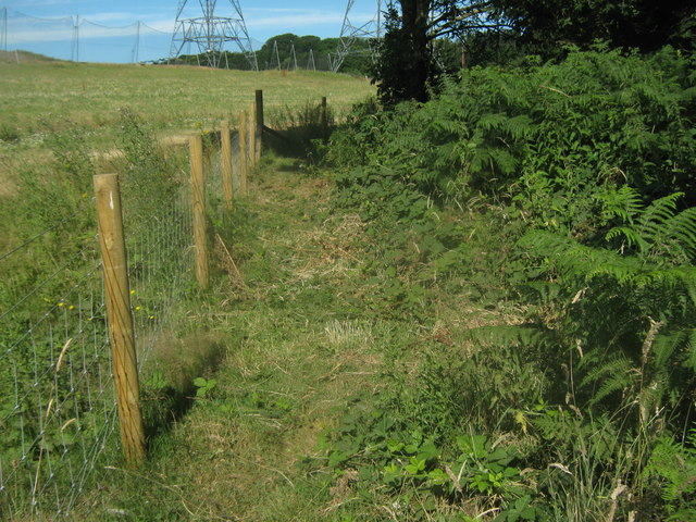 Footpath junction near Lynne Wood