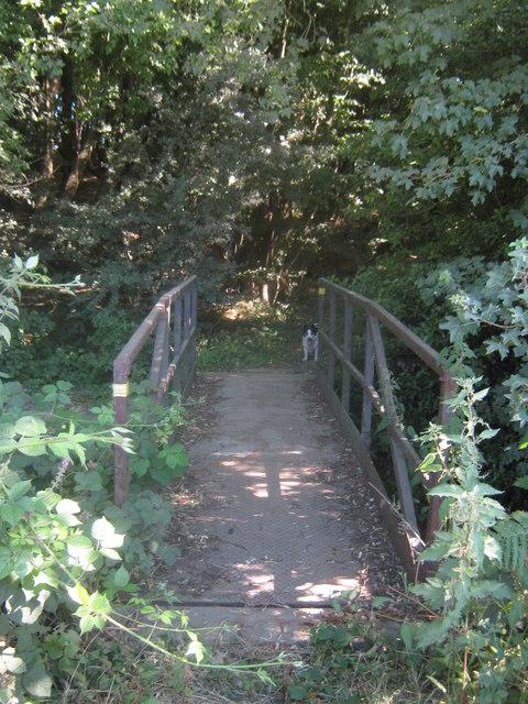 Footbridge in Beecham Wood