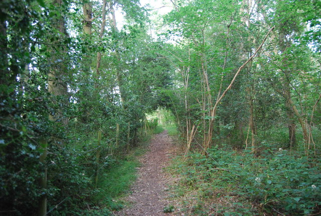 Footpath to Wickhurst Rd, Thickets Wood