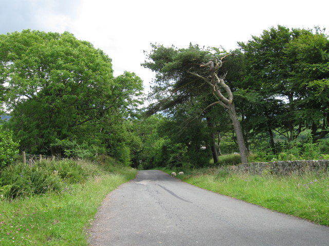 Road to Brownrigg