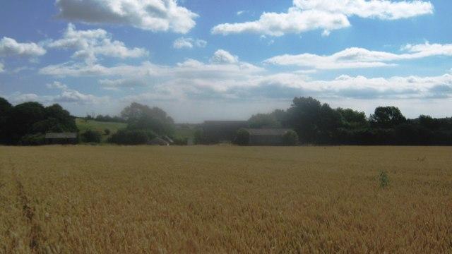 Vale Farm