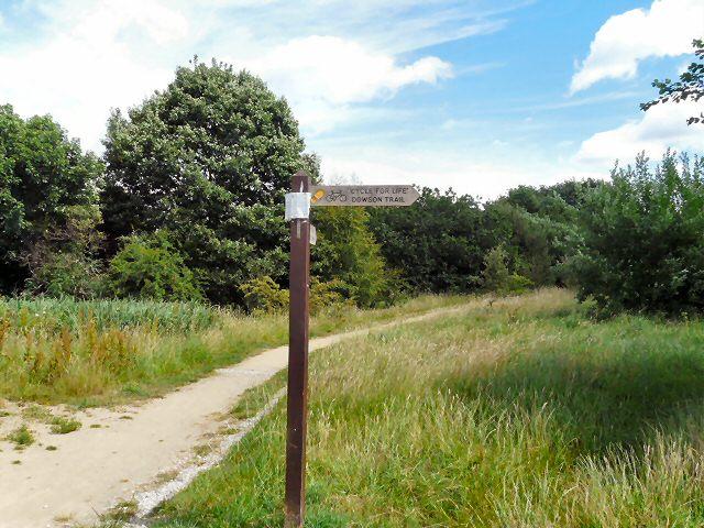 Dowson Trail