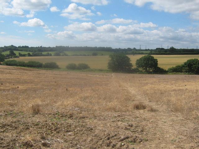 Footpath towards Broad Oak