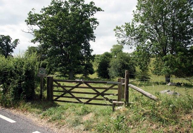 National Trust land at Lockeridge Dene
