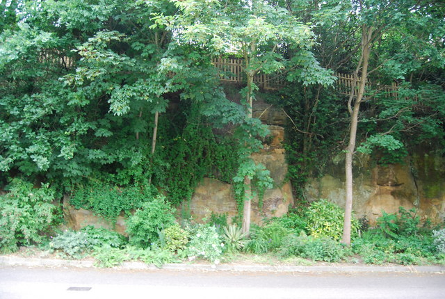 Well vegetated sandstone Cliff, All Saints Rise