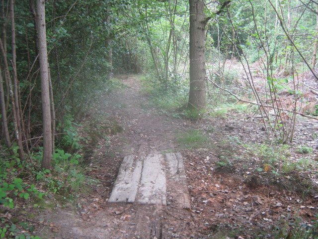 Footbridge in Belce Wood